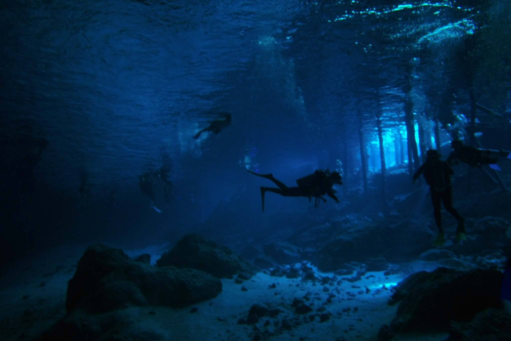 What Does Scuba Diving and Real Estate Have in Common?